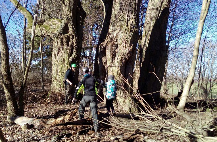 Zaskoczeni urzędnicy i dzieci w drzewach