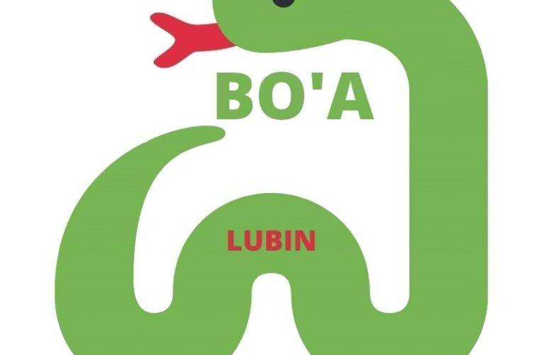 Budżet Obywatelski w Lubinie